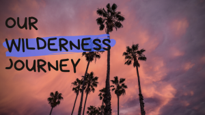 Our Wilderness Journey